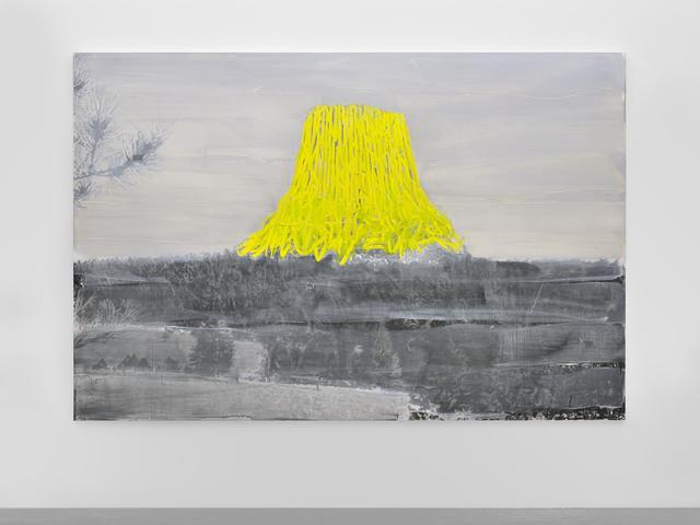 Tursic & Mille, 'Landscape and Yellow', 2014, Almine Rech
