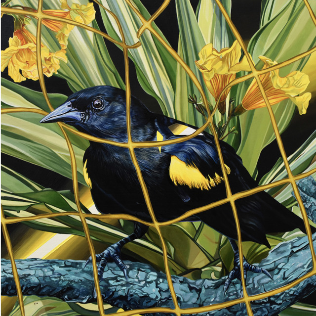 Juan Travieso, 'Endangered Birds #180', 2019, Miami Art Society