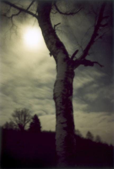, 'Moonshine,' 2000, Yancey Richardson Gallery