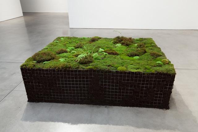 , 'Volume for Lying Flat,' 2016, Paula Cooper Gallery