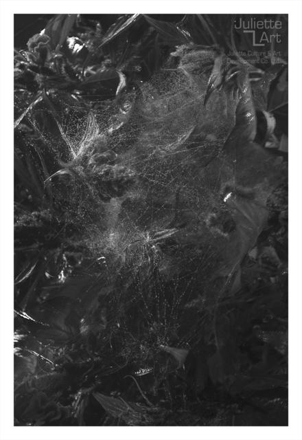 , 'The Light of Dark Night No.24,' 2013, Juliette Culture and Art Development Co. Ltd.