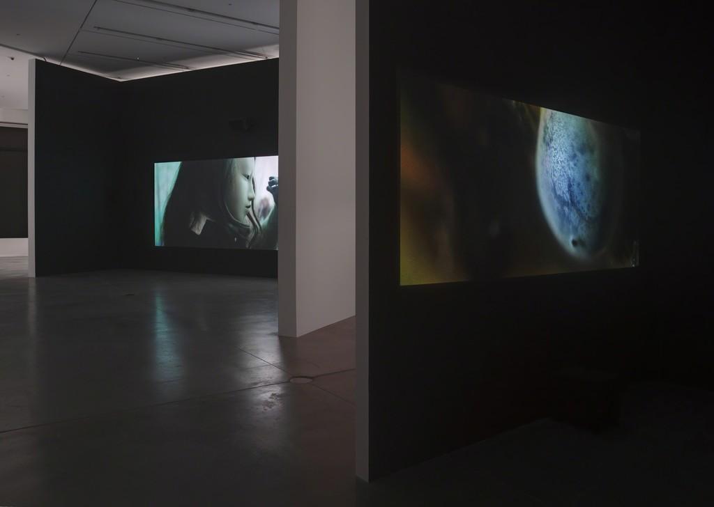 Pierre Huyghe, 'De-extinction,' 2014, Hauser & Wirth