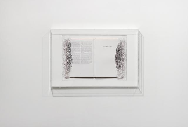 , 'Zurburan's Color Plates,' 2011, Josée Bienvenu