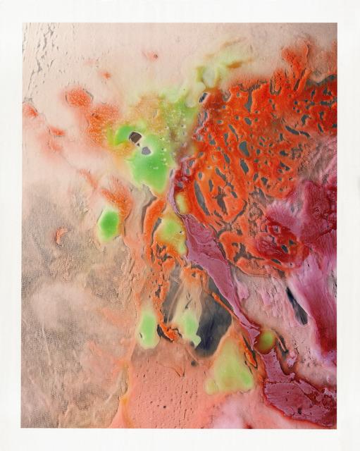 , 'Sea Swallow Me (BAM+NADA Portfolio),' 2013, BAM