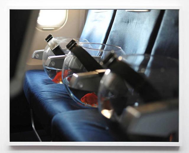 , 'I am flying to Hong Kong,' 2009, Perrotin