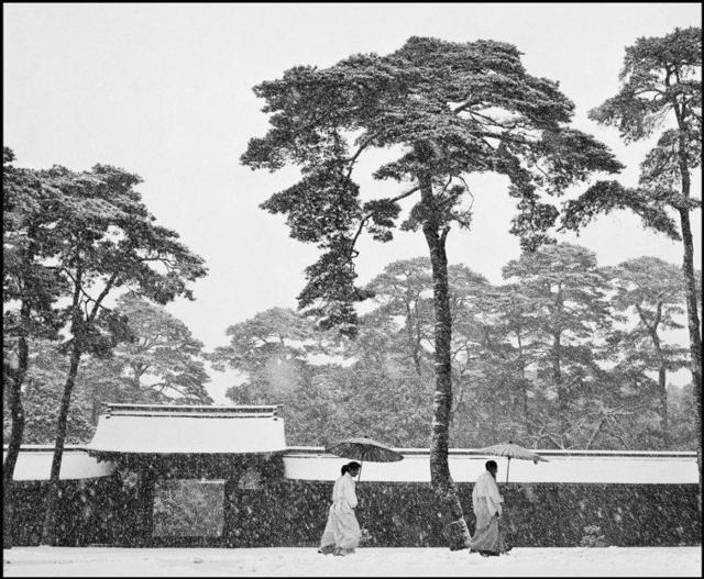 , 'JAPAN. Tokyo. Courtyard of the Meiji shrine,' 1951, IBASHO