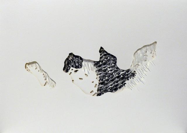 , 'Territories,' 2017, Officine dell'Immagine