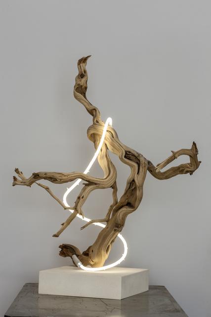 Lisa Schulte, 'Untitled Wood Series #4', 2014, Sculpture, Neon Tubing and Driftwood, Voltz Clarke