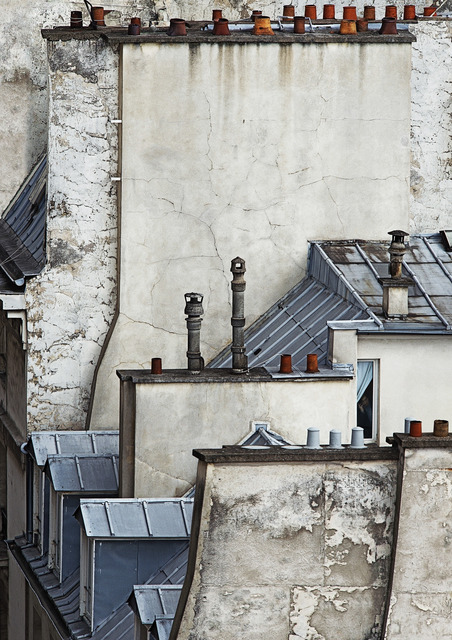 Michael Wolf (1954-2019), 'Paris Rooftops 8', 2014, Flowers