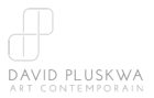 David Pluskwa