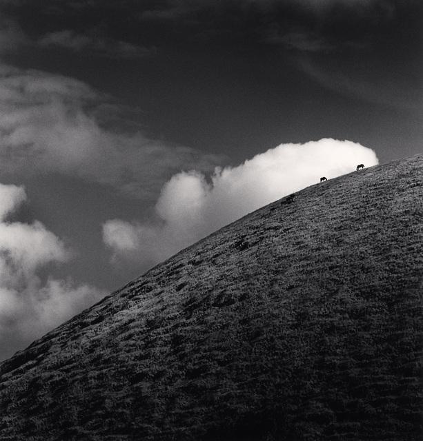 , 'Seven Horses, Iti Maunga, Easter Island,' 2001, photo-eye Gallery