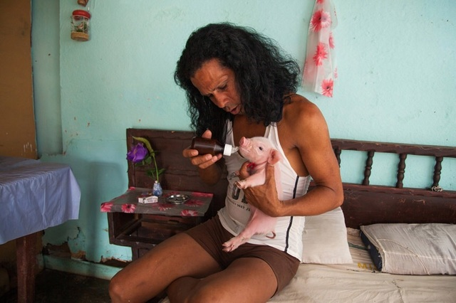, 'Charito at home with one-week-old piglet, Camagüey,' 2013, Cinnabar