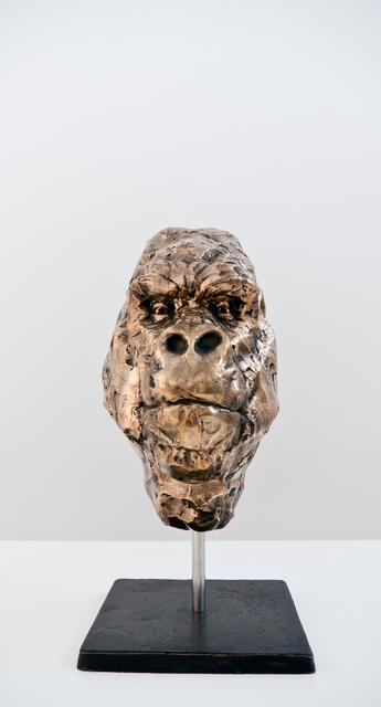 , 'Bushmeat Bust,' 2015, Southern Guild