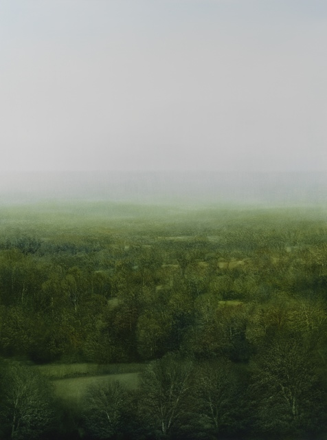 , 'Celestial Forest,' 2015, Gallery NAGA