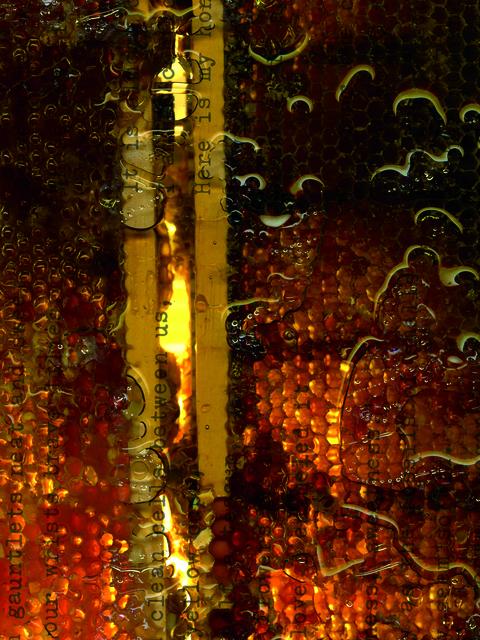 , 'Seneca Honeycomb III,' 2015, Gallery 19