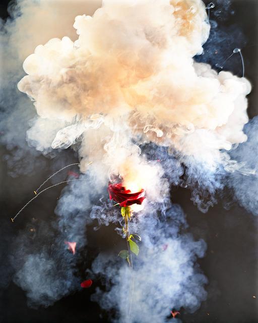 , 'Exploding Rose,' 2013, Contessa Gallery