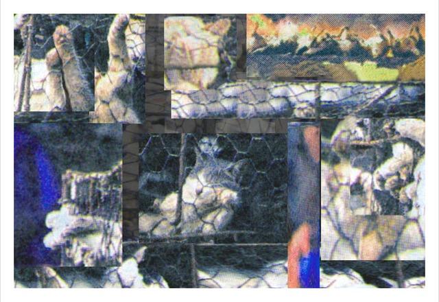 , 'Caged Cats I,' 2005, The Merchant House