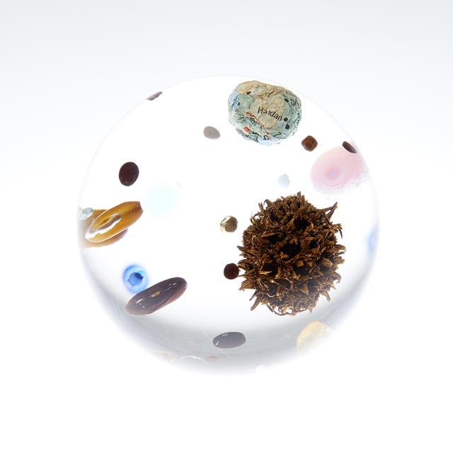 , 'Beans Cosmos (Tama),' 2017, Umberto Di Marino