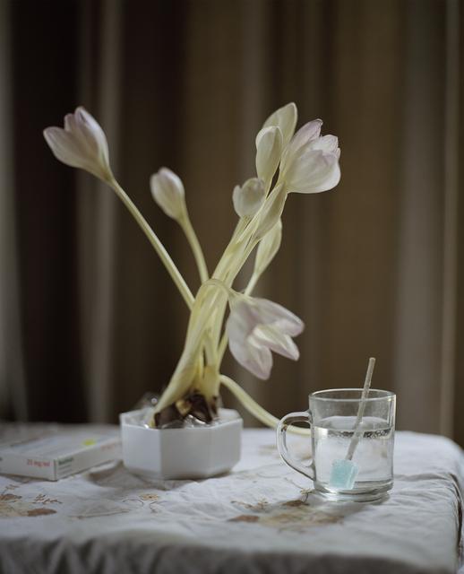 , 'Flowers for Ben,' 2009-2015, Van der Mieden Gallery