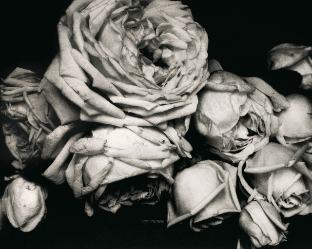 , 'Edward Steichen: The Early Years, 1900-1927,' 1900-1927, Aperture Foundation