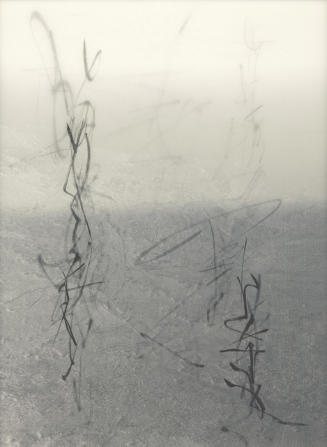 Chaco Terada, 'Code II', 2010, Mixed Media, Archival pigment print on layers of silk organza with sumi ink and mineral pigments, Valley House Gallery & Sculpture Garden
