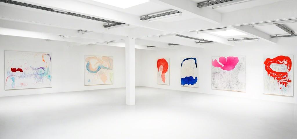 Gonn Mosny, Ausstellungsansicht, Kunstraum Innsbruck, 2017. v.l.n.r.: Gonn Mosny, LW 236, 200 cm x 215 cm, 2017 LW 235, 200 cm x 215 cm, 2017 LW 211, 200 cm x 130 cm, 2016 LW 214, 200 cm x 150 cm, 2016 LW 237, 200 cm x 216 cm, 2017 LW 226, 200 cm x 140 cm, 2017 courtesy by the artist and Volker Diehl Gallery. Foto: Verena Nagl