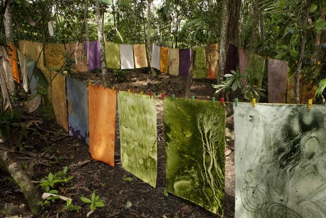 , 'Color Amazonia,' 2014, Galería de la Oficina