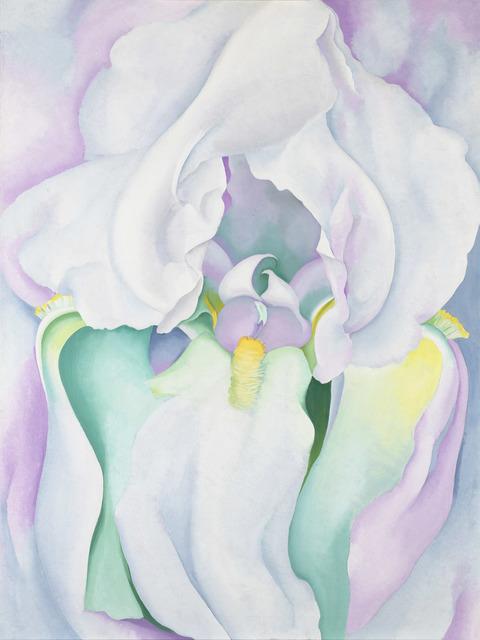 , 'White Iris ,' 1930, Tate Modern
