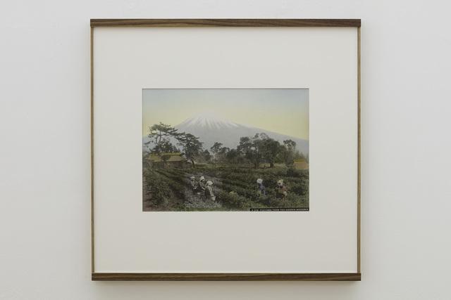 , 'Fujiama from Tea Garden,' 2018, Vistamare/Vistamarestudio
