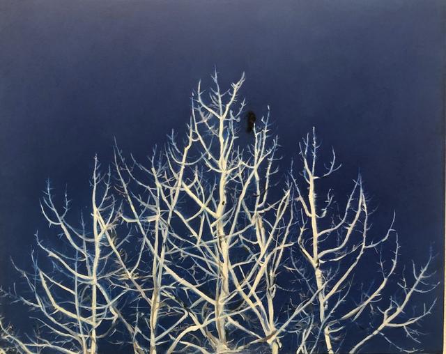 , 'Trees, Bird,' 2019, Park Place Gallery
