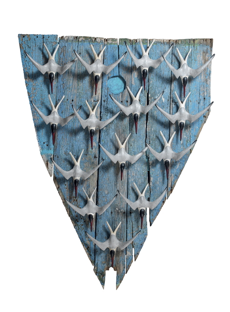 , 'Fourteen Terns on a Boat Panel,' , Dowling Walsh