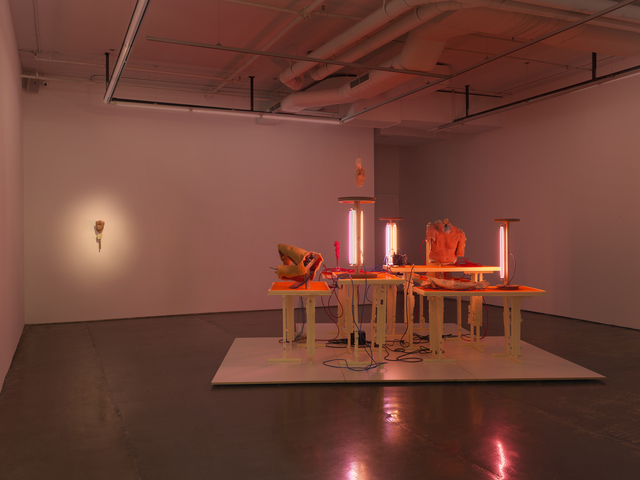 , 'Installation,' 2015-2016, Cassina Projects
