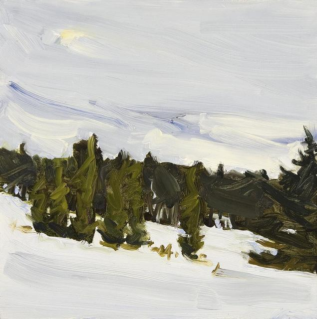 Susan Headley Van Campen, 'Fresh Snow and Arborvitae in Early April ', 2017, Painting, Oil on panel, Dowling Walsh