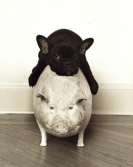, 'Pigging Out,' ca. 2010, Dog & Horse Fine Art