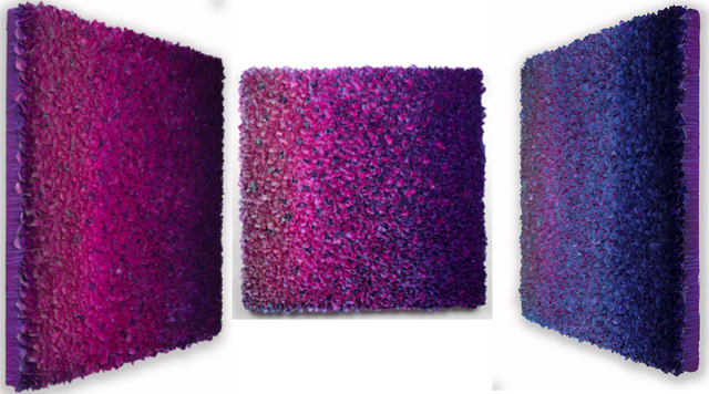 , 'Flowerbed Colorchange,' 2015, SmithDavidson Gallery