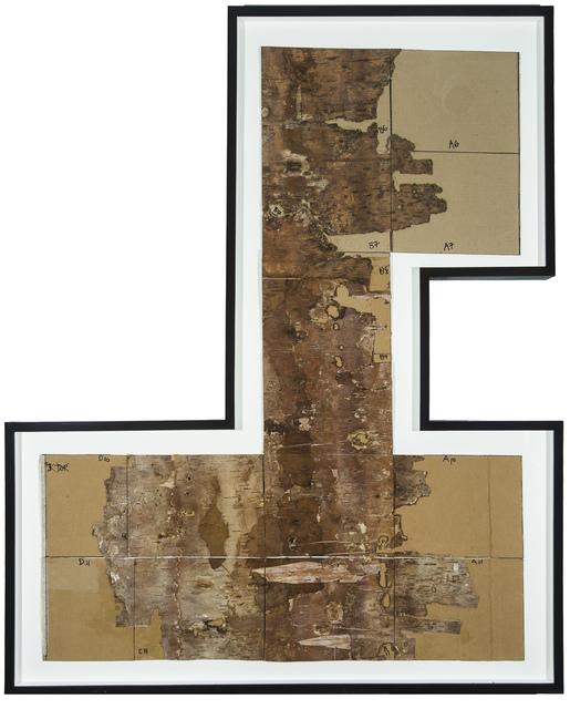, 'Bark Framed #2,' 2012, Tayloe Piggott Gallery