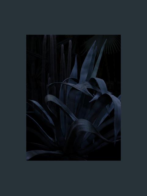 , 'Jardin Majorelle, Hommage à Yves Saint Laurent Study 3,' 2015, Odile Ouizeman