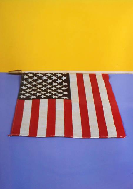 Neil Winokur, 'Flag (Ann Magnuson)', 1985, Elizabeth Clement Fine Art