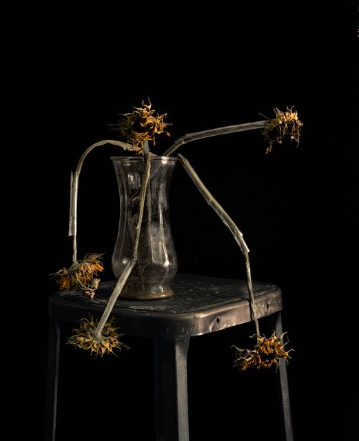 , 'Flowers XXIII,' 2011, CHRISTOPHE GUYE GALERIE
