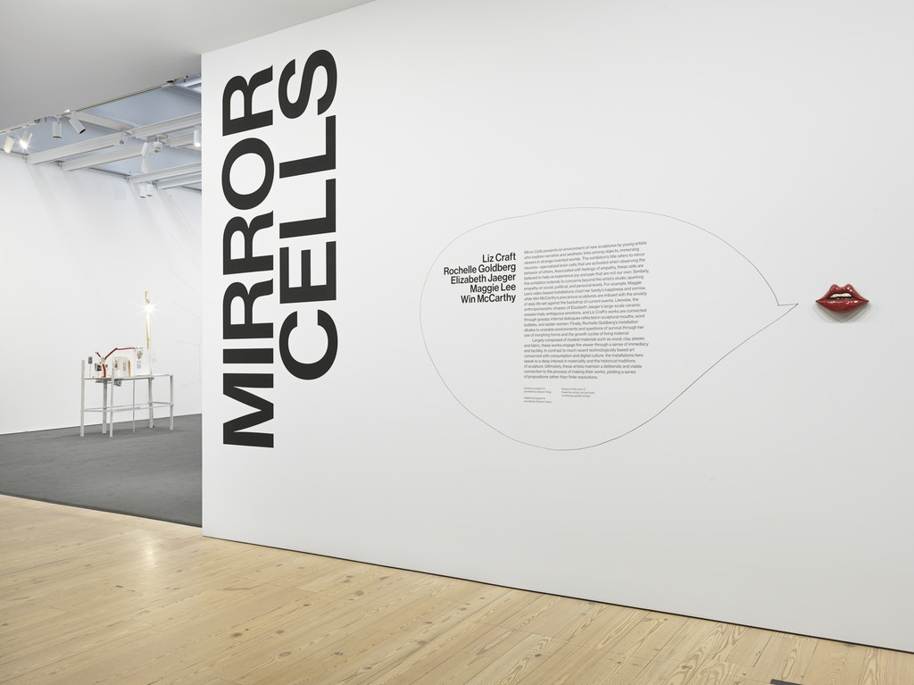 """Installation view of """"Mirror Cells"""" at Whitney Museum of American Art, New York (2016). Photograph Genevieve Hanson, NYC."""