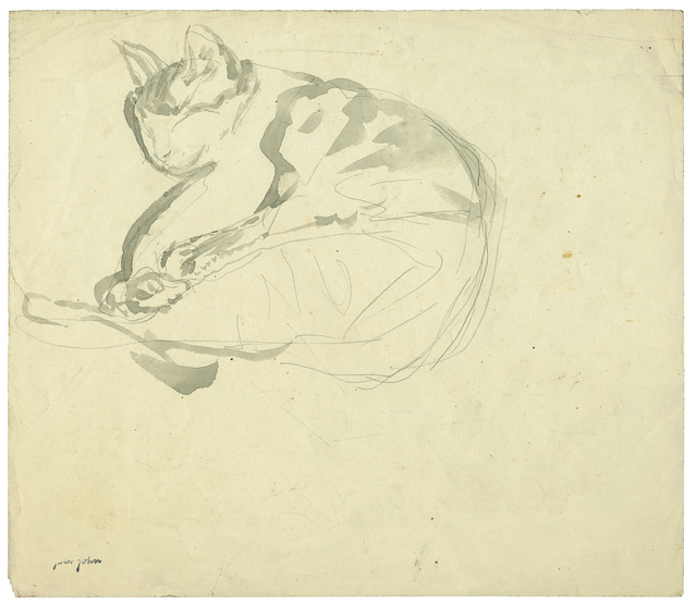 , 'Curled Up Sleeping Tortoise-Shell Cat,' 1904-1908, Davis & Langdale Company, Inc.