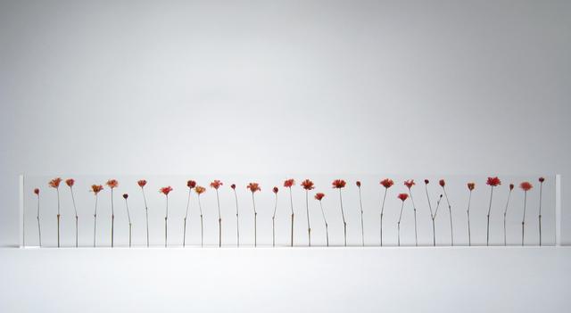 Norihiko Terayama, 'f.l.o.w.e.r.s', 2007, Design/Decorative Art, Acrylic glass, dry flowers, Micheko Galerie