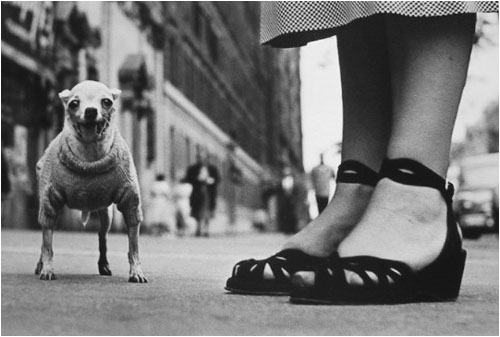 , 'New York City (Chihuahua),' 1946, Foto Relevance