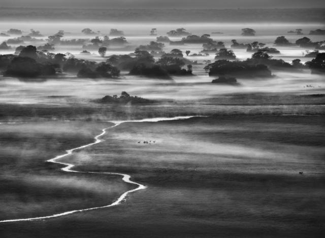 , 'KAFUE NATIONAL PARK, ZAMBIA,' 2010, Beetles + Huxley