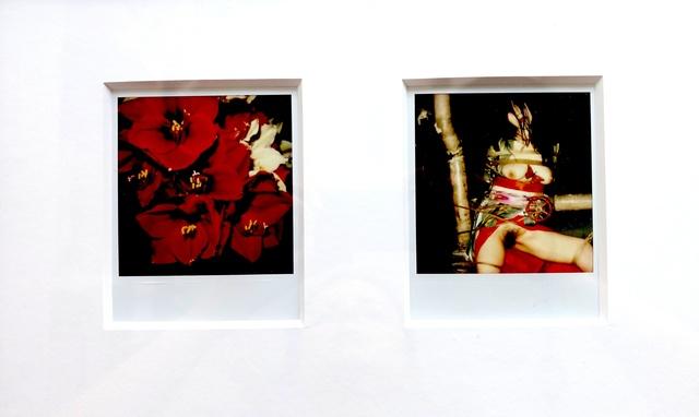 "Nobuyoshi Araki, '""Flower"", 2006-2009 + ""Pola Eros"", 2010-2012', Michael Hoppen Gallery"
