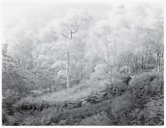 , 'Wind Series II, No. 4,' 1981, KLOMPCHING GALLERY