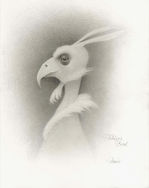, 'Toliver's Bird Drawing,' 2014, AFA Gallery