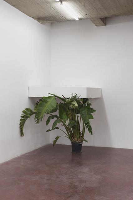 , 'Untitled,' 2012, Dvir Gallery