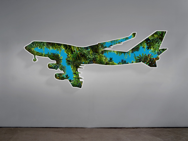 , 'Jungle Plane,' 2017, Regen Projects