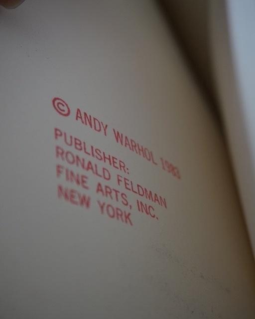 Andy Warhol, 'San Francisco Silverspot, Endangered Species F&S II.298', 1983, Print, Screenprint on Lenox Museum Board, Fine Art Mia